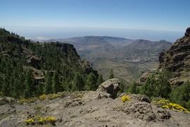<strong>Gran Canaria (Canarian Islands) 1</strong>