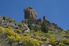 <strong>Roque Nublo, other side</strong>