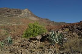 <strong>Gran Canaria (Canarian Islands) 22</strong>