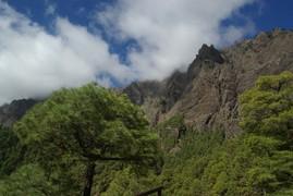 <strong>La Palma</strong>