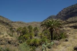 <strong>Gran Canaria (Canarian Islands) 30</strong>