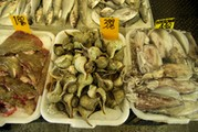 <strong>China Town fish</strong>